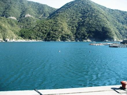 蒲江の尾浦